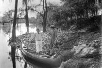Obras de arte de «Interpretando a Florida» se unen para crear «una poderosa  cápsula del tiempo»