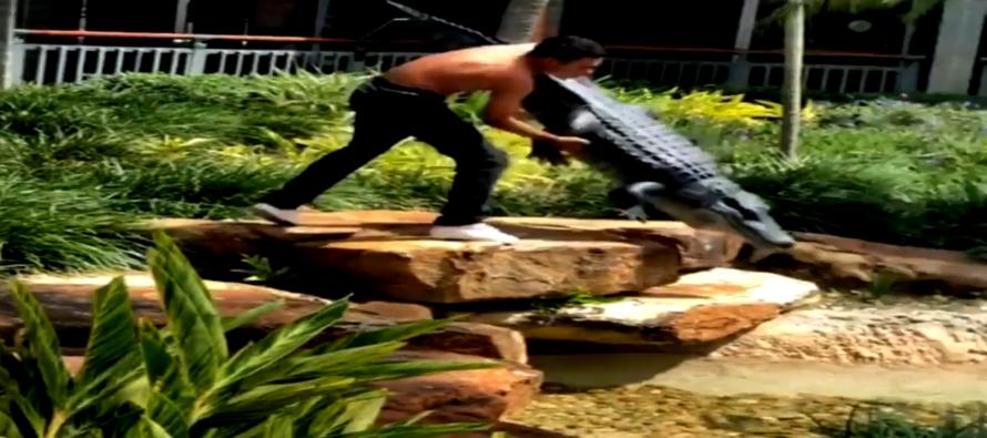 ¡Insólito! Estudiante ataca a un cocodrilo falso y termina tras las rejas