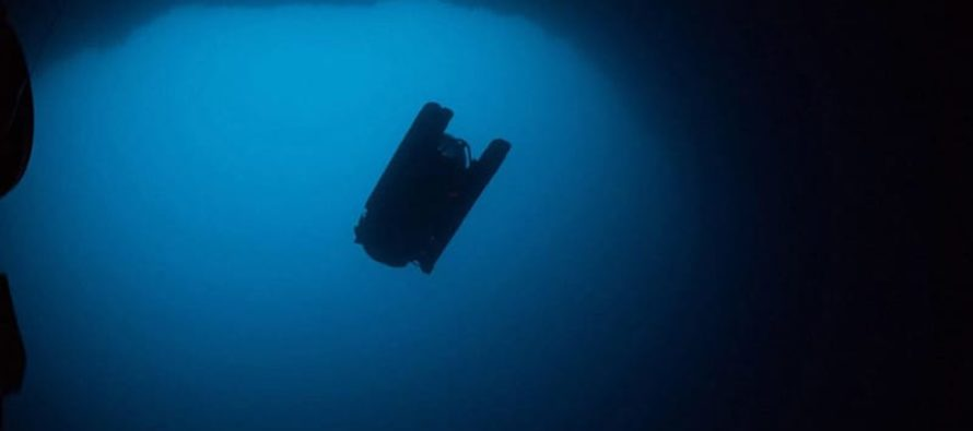 Expedición submarina descifra uno de los enigmas del mundo oceánico…