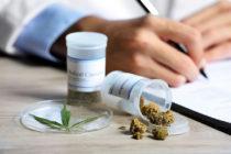 La Casa de Estado quiere participar en una demanda por el cannabis medicinal