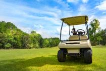 Policía capturó a hombre que intentó robar un carrito de golf en Florida