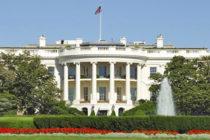 Conócelos: candidatos demócratas a medirse contra Trump en 2020