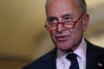 Senador Chuck Schumer instó a miembros del partido demócrata a eliminar FaceApp