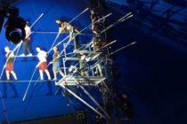 Revelan trágico momento donde 5 equilibristas caen a 10 metros de altura en circo de Florida