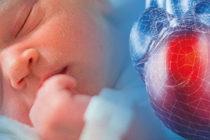 Bajo la lupa estarían operaciones cardíacas infantiles en Florida