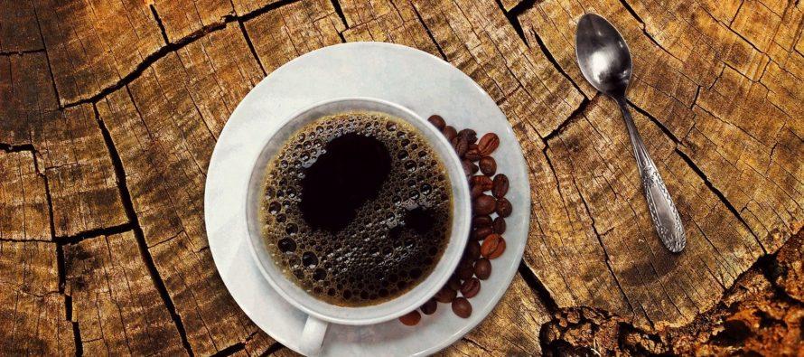 Conoce este lugar al sur de Florida en el que puedes degustar una taza de café totalmente ecológica
