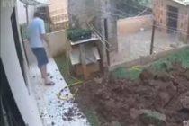 Hombre quería matar unas cucarachas y terminó haciendo explotar su jardín (Video)