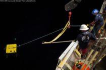 Monstruo marino es grabado por investigadores en el Golfo de México (VIDEO)