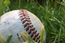 MLB le prohibió a sus beisbolistas viajar a Venezuela y jugar la temporada 2019 – 2020 de la LVBP