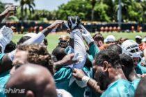 Dolphins esperan salir de las derrotas en su próximo juego