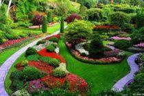 Acusan por fraude al IRS a un jardinero millonario de Florida