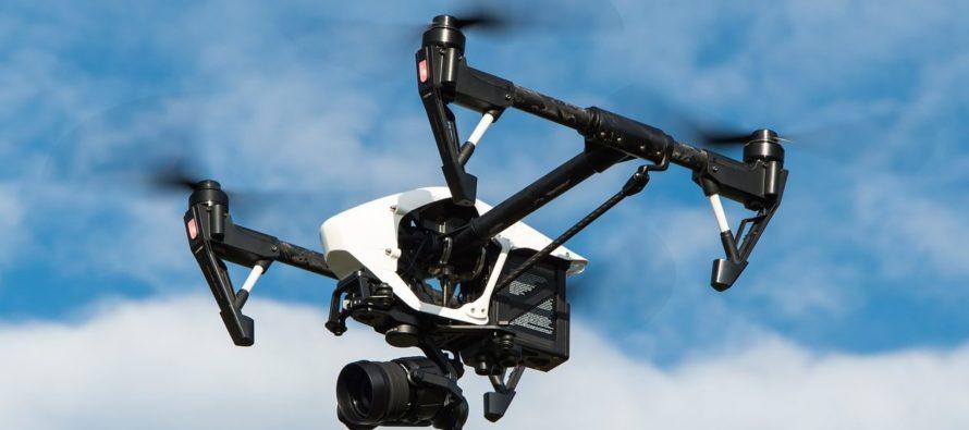 ¡Nueva forma de cazar! En Florida usarán drones para acabar con pitones