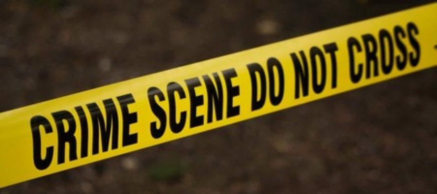 Peatón se encuentra en estado crítico tras ser atropellado en el barrio Allapattah de Miami