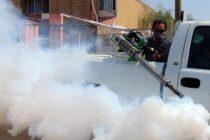Miami da un paso adelante y prohíbe el uso de herbicidas para garantizar seguridad ambiental y la salud de los residentes