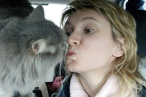 ¡Increíble mascota! Gato salva de la muerte a su dueña
