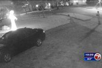 2 Vándalos fueron captados en vídeo mientras destruían las decoraciones de Halloween de una casa en Culter Bay