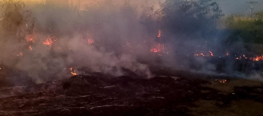 Las autoridades encuentran un cadáver al atender incendio forestal en Flagler