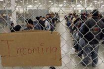 Inmigrante sexagenario cubano falleció bajo custodia de ICE