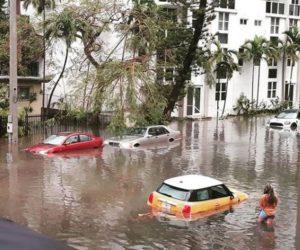 UniVista: ¿Cómo puede proteger su auto del clima tropical?