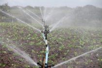 Ciudad de Florida busca experto en gestión del agua