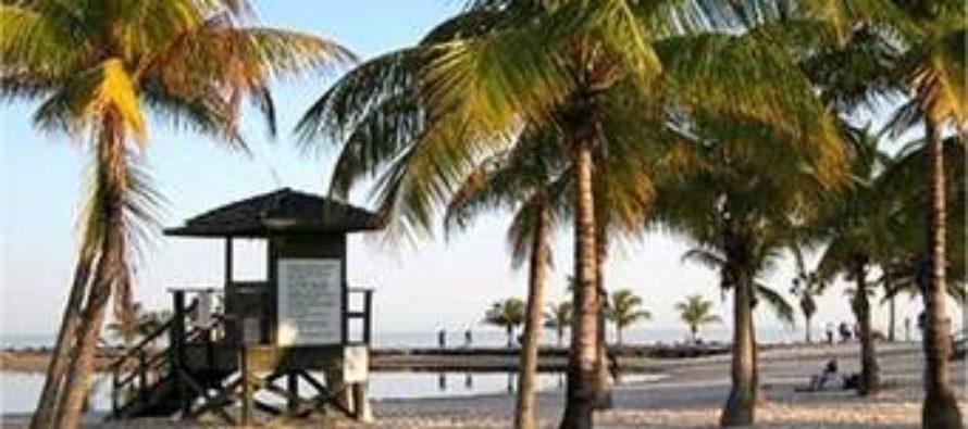 Prepárate si quieres darte un chapuzón, las playas de Miami estarán repletas de miles de temporadistas