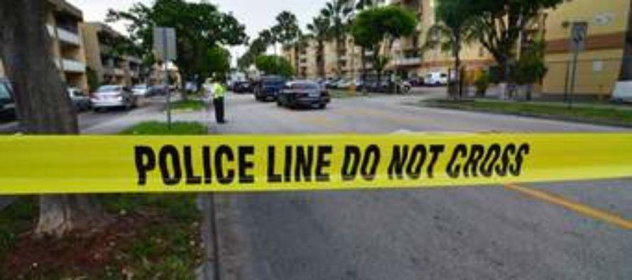Arrestan a mujer por asesinar a su novio en huerto de naranjas en Florida