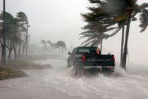 Tiroteos masivos y regreso de los huracanes: Una década con matices grises para la Florida