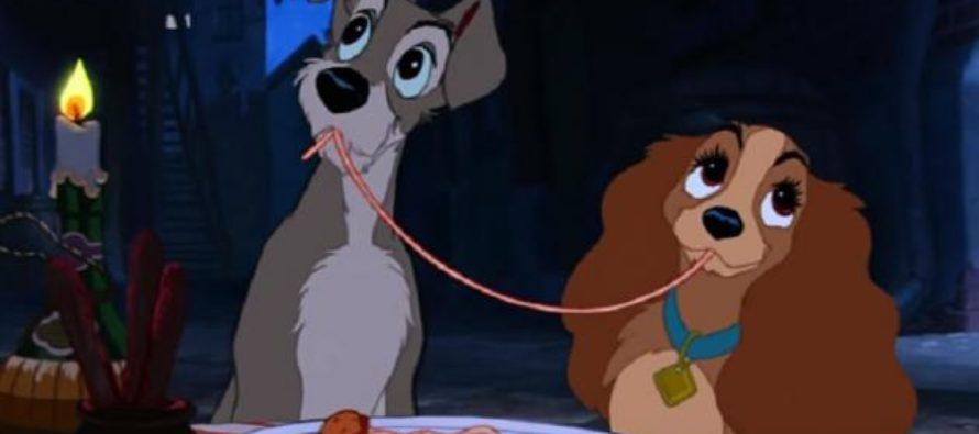 Protagonista de La Dama y el Vagabundo será un perrito rescatado por Disney