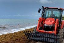 Autoridades de Miami-Dade iniciaron operativo para eliminar el sargazo de las playas