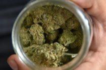 Inauguran el primer dispensario de marihuana en Miami