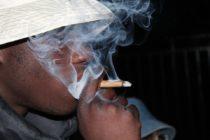 Legisladores de Florida alertan sobre la posible legalización del «uso de marihuana» para adultos