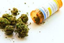 Fiscal Federal no procesará casos de marihuana medicinal en Florida
