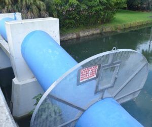 Protección Ambiental advierte sobre químicos nocivos en el agua potable de Miami-Dade