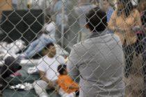 8 de cada 10 migrantes cubanos buscarán estatus legal en México