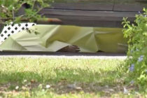 Mujer hispana robada y asesinada en Miami Gardens