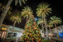 Conoce lo mejor de la Navidad en Miami