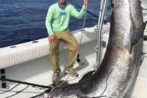 ¡Sensacional! Atrapado un inmenso pez espada de 343 kilos
