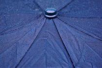¡Atención! Habitantes del sur de Florida deben ir preparando sus paraguas para este fin de semana