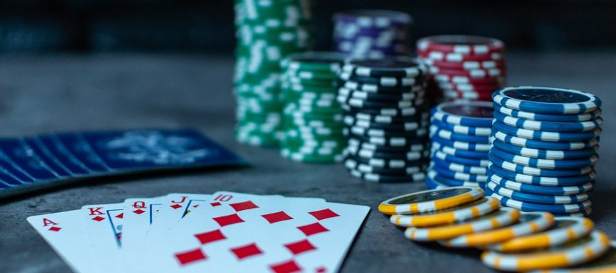 La increíble historia de Maria Konnikova: del periodismo al póker
