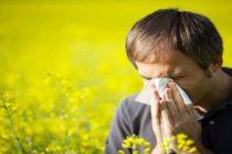 ¡A cuidarse de las alergias! Recuento de polen seguirá aumentando a medida que se acerque la semana más calurosa del año