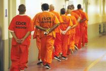 Liberaron 462 presos en un sólo día en EEUU