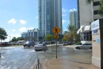 Ron DeSantis elige a Julia Nesheiwat para atender el cambio climático de Florida