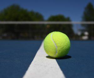 Venezuela y Ecuador jugarán por el Grupo 1 de la Copa Davis este fin de semana en Miami