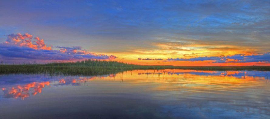 Se deben cambiar las estrategias para evitar el desmoronamiento de los Everglades