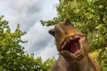 ¡Para morir de risa! La broma que se hizo viral en Instagram que involucra a un Tiranosaurio Rex +Vídeo