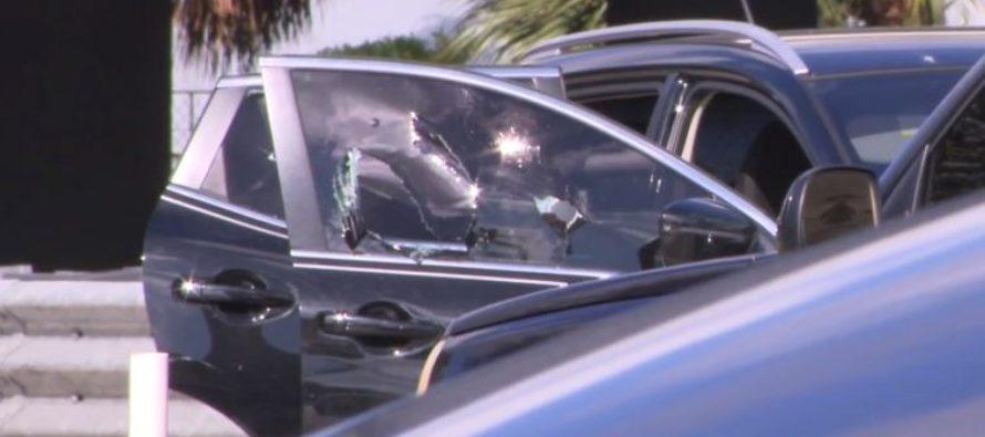 Conductor fue asesinado a tiros mientras conducía por Miami Gardens Drive