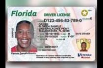 Proyecto de Ley de Florida otorga licencias de conducir a inmigrantes ilegales