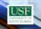 Universidad del Sur de Florida gastó casi $ 50,000 en nuevo logotipo y sus estudiantes lo odian