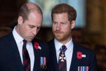 En medio de crisis de la familia real: Príncipes William y Harry emiten declaración conjunta